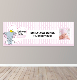 Personalised Girls Welcome To The World Photo Upload Banner